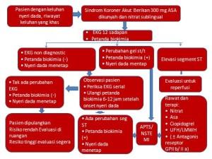 Terapi Non Farmakologi Penyakit Kanker Kolon