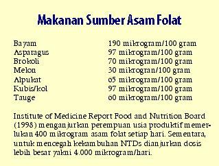 Manfaat Asam Folat Bagi Ibu Hamil - tokoalkes.com ...